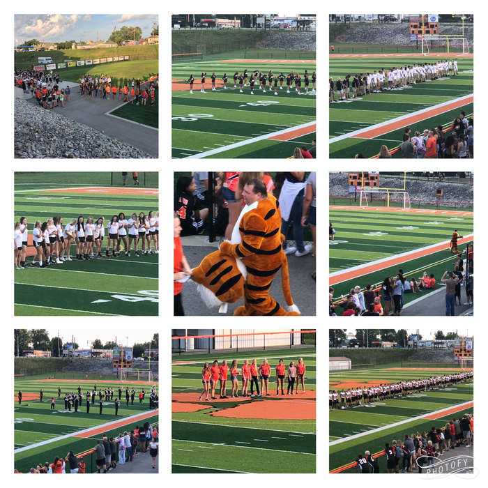 Meet Your Tiger Night
